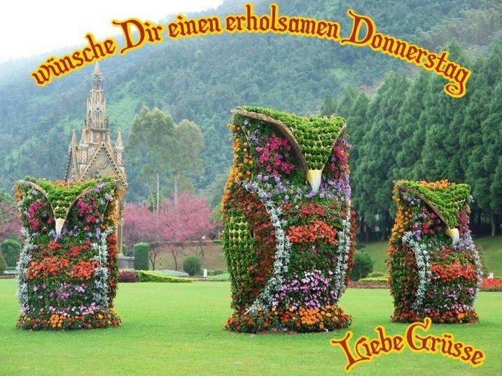 An den Beitrag angehängtes Bild: http://img2.dreamies.de/img/26/b/9hn60zq4rsa.jpg