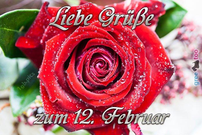 An den Beitrag angehängtes Bild: http://img2.dreamies.de/img/538/b/brpfq4n9u8b.jpg