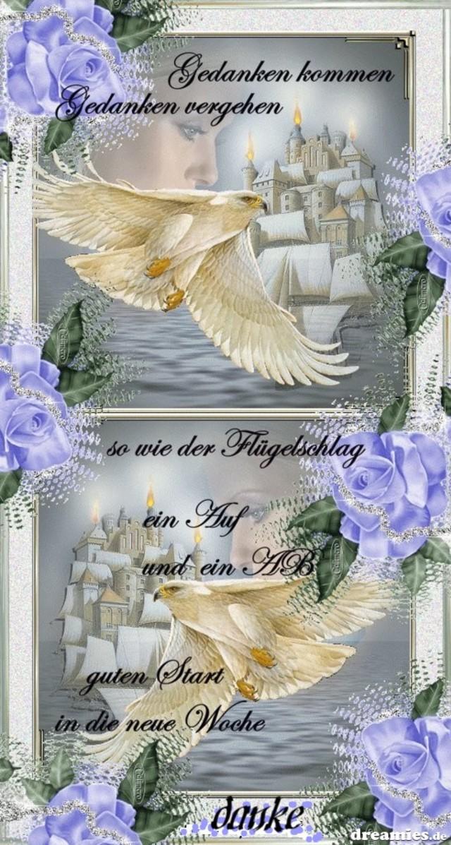An den Beitrag angehängtes Bild: http://img2.dreamies.de/img/616/b/rpic7ievxab.jpg