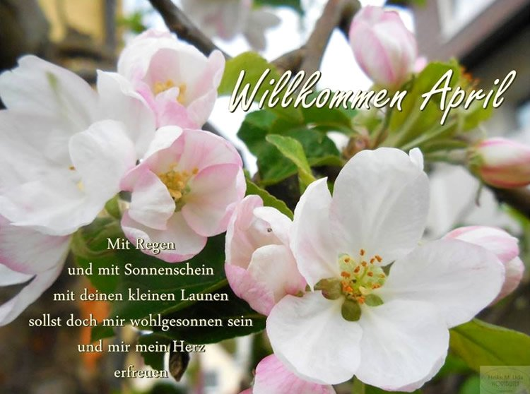 An den Beitrag angehängtes Bild: http://img2.dreamies.de/img/896/b/loxa38qc73f.jpg