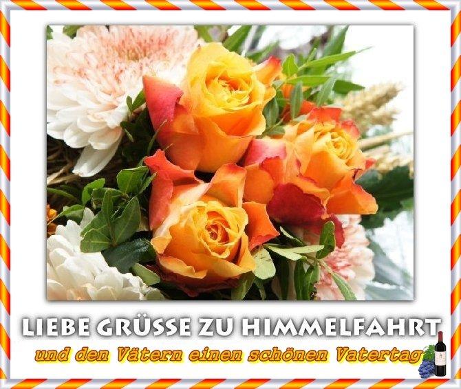 An den Beitrag angehängtes Bild: http://img2.dreamies.de/img/979/b/ssjbvtq9r84.jpg