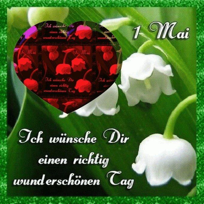 An den Beitrag angehängtes Bild: http://img2.dreamies.de/img/990/b/v0pj025chrt.jpg